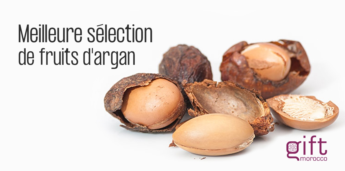 presentation giftmorocco argan fruit best organic ecocert onssa fda iso9001 wholesale bulk vac conditionne